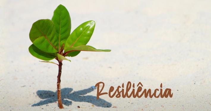 Resiliência - A força que nos faz vencer
